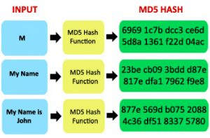 md5-hash-function
